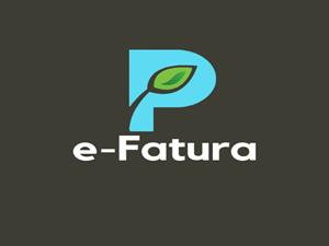 E-FATURA NEDİR ?